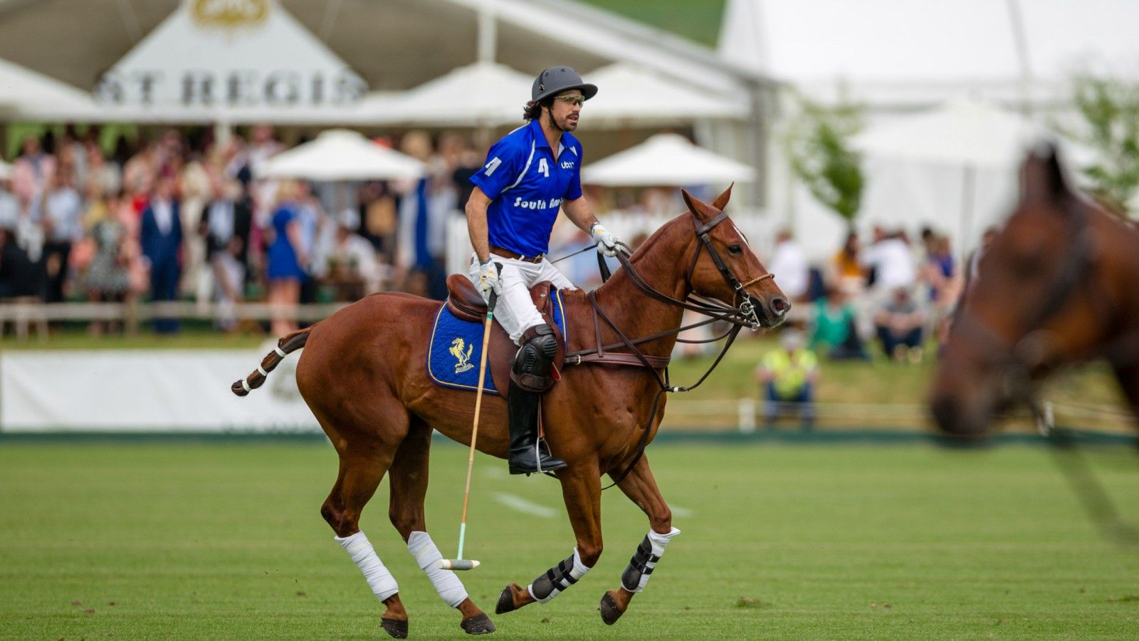 Polo | The St. Regis New York